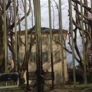 La toiture de la Maison Arnaud à Pélissanne.