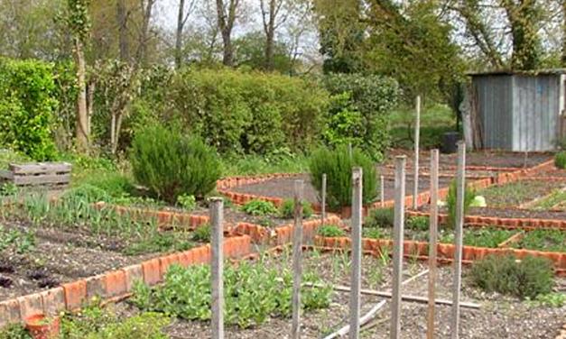 Des jardins partagés à Pélissanne